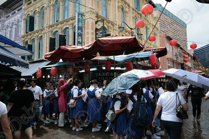 IMG 7299 